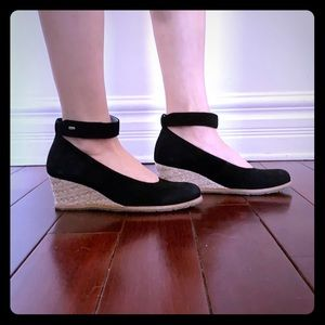 Wolky wedge pump